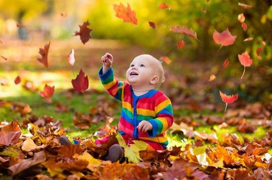 Sonbaharda doğan çocuklar daha başarılı