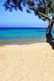 Thassos adasında bir tatil macerası