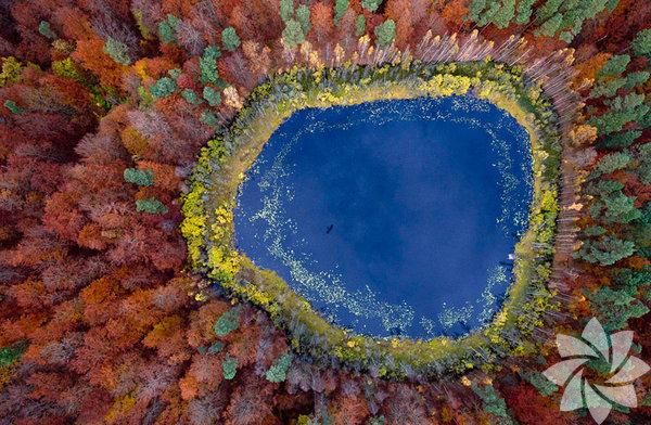 Kuşların gözünden ülkelerin en güzel manzaralarını görmeye ne dersiniz?  Pomerania Gölü, Polonya