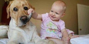 Çocuklar ile hayvanlar bir araya gelirse
